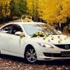 Где заказать автомобили на свадьбу