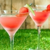 Как из арбуза сделать алкогольный напиток