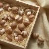 Как легко сушить грибы