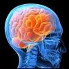 Как натренировать мозг