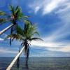 Как оформить работнику отпуск без содержания