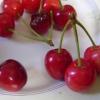 Простой рецепт вишневого ликера