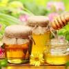 Как добывают мёд