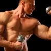 Как нарастить мышцы на руках